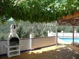 my backyard vineyard