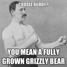Cuddle Buddy Meme - cuddle buddy you mean a fully grown grizzly bear misc quickmeme