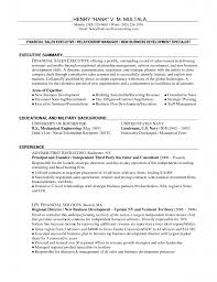 example business resume sample resume business development manager insurance vice business sample business development resume