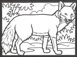 Woodland Animals Stained Glass Coloring Book 014608 Details Woodland Animals Coloring Pages