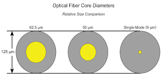 fiber type vs speed and distance