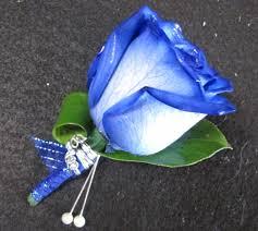 blue boutonniere a boutonniere blue a boutonniere blue blue