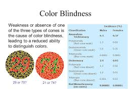 Cause Of Colour Blindness Physics Of Color Spectrum Of Visible Light Wavelengths U0026 Photons