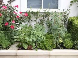 Urban Vegetable Garden by Contemporary Urban Vegetable Garden Hgtv