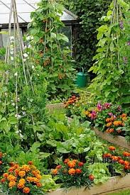 a potager is the term for an ornamental vegetable or