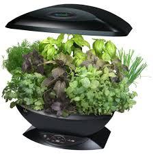 15 must see hydroponic herb garden pins hydroponic gardening