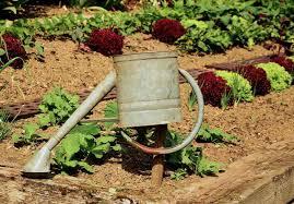 vegetable garden soil prep home outdoor decoration