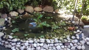 Vasche Da Giardino Per Pesci by Come Costruire Un Laghetto Fai Da Te Fardasefapertre