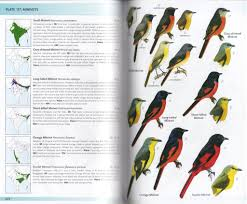 review birds of india pakistan nepal bangladesh bhutan sri