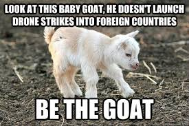 Funny Goat Memes - look at this baby goat he doesn t launch drone strikes into