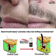 Vitamins That Help With Hair Growth Best Beard Growth Supplements Reviews Uk 2017