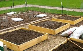 Cedar Raised Garden Bed How To Build Cheap And Productive Raised Garden Beds The Old