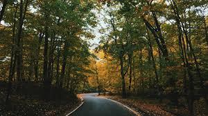 spiritual baptist thanksgiving service eight roadblocks to spiritual health desiring god