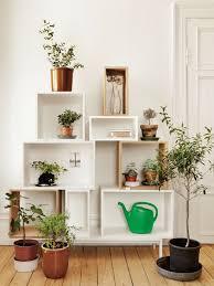 home interior plants 99 great ideas to display houseplants indoor plants decoration