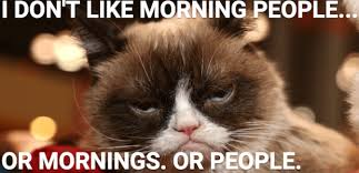Morning People Meme - i hate morning people made me laugh pinterest hate