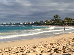 Forest And Waves State Of by Hawaii State Parks Beaches Hiking And Camping