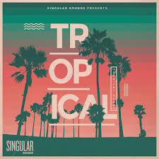 tropical photo album become the next tropical house with singular sounds newest