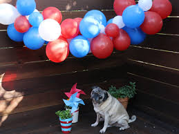 4th Of July Party Decorations 3 Crafty Diy 4th Of July Party Decorations Rent A Center Front