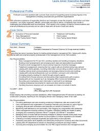 sales resumes exles resume template sensational profile exles for resumes goodal
