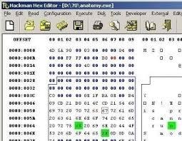 html input pattern hexadecimal editor