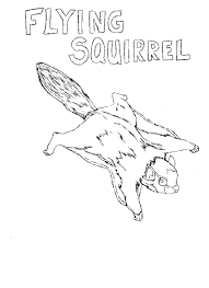 printable squirrel coloring pages me embroidery a page of fish