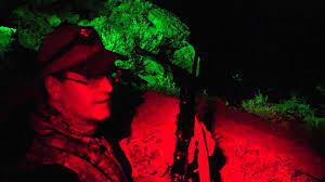green light for hog hunting hog predator varmint night hunting light wicked lights youtube