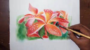 drawing plumeria flowers oil painting dry brush with