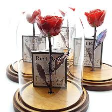 rose in glass red beauty and the beast forever rose