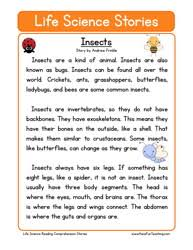 stories for comprehension reading comprehension worksheets teaching