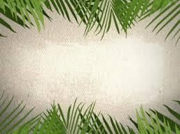 palm for palm sunday palm sunday background loop 2 4thoughtmedia worshiphouse media
