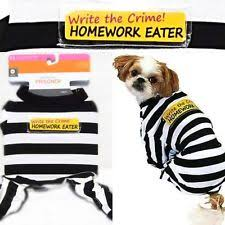 Target Dog Halloween Costumes Target Prisoner Dog Costume Halloween Cute Xs 10 Pounds