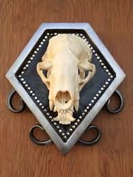 custom mounted vintage roe deer skull antlers oddities