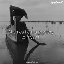 Mystery I U0027m Never Gonna by Best 25 I Am Ideas On Pinterest Affirmations Healing