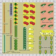 Veg Garden Layout Garden Plan Our 1st Vegetable Garden