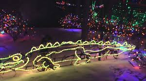 Zoo Lights Dates by Lights Before Christmas Toledo Zoo Youtube