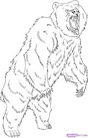 Are Bears Color Blind Bear Coloring Pages