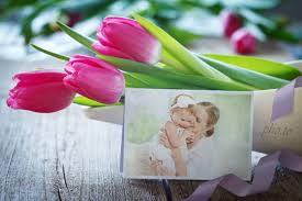 tulips for you free ecard with flowers and greetings online