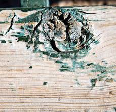 stripped paint in the blue wood door and rusty nail stock photo