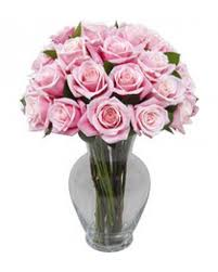 Vase With Roses 25 Pink Roses With Free Vase