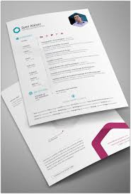 Simple Resume Sample by 30 Best Professional Resume Templates Collection Web Creative All