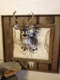 best 25 deer mount decor ideas on deer mounts deer