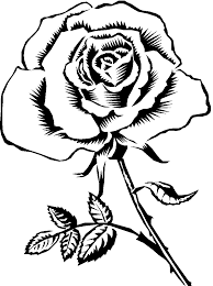 rose black and white clipart many interesting cliparts