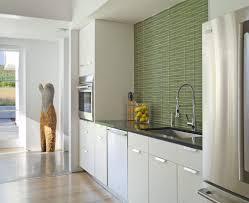 san francisco contemporary kitchen backsplash transitional with