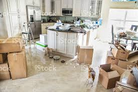 Chair Boxes Moving Dogs In Kitchen With Packing Boxes On Floor For Moving Stock Photo