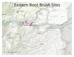 Columbia River Map Gorge Weeds U2013 Early Detection Rapid Response Hood River Soil And