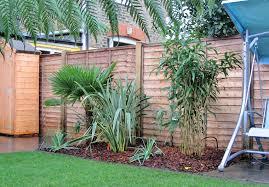 Terraced House Backyard Ideas Triyae Com U003d Jungle Backyard Ideas Various Design Inspiration