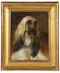 afghan hound stupid 57 best afghan hound paintings art images on pinterest afghans