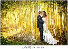 wedding quotes japanese balboa japanese garden engagement search photography