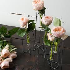 Test Tube Flower Vases Multi Tube Rack Magnolia Market Chip U0026 Joanna Gaines