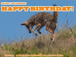 Hunting Meme - varmint hunting meme happy birthday from hunting magazine hunting